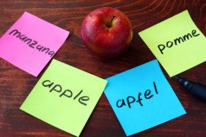 Apple, French, English, Spanish, German Translation